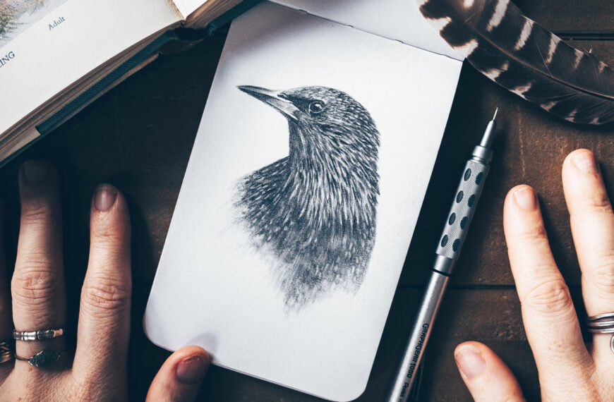 17 Drawing Techniques to Draw and Sketch like a Pro